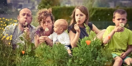 Thérapie familiale systémique, avec ou sans hypnose conversationnelle - Namur